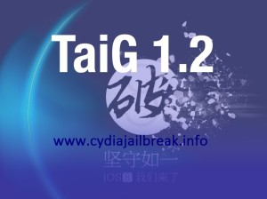 TaiG 1.2 download